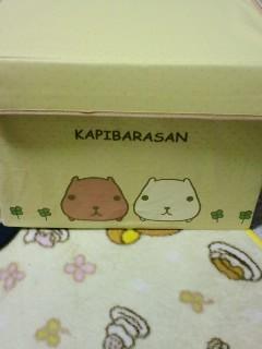 カピバラさんの箱ヽ(*´∀`*)ノ