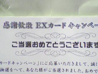 あらっ?(´・∀・`)