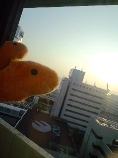 2009年9月関西遠征~(゚Д゚)クワッ~その8~