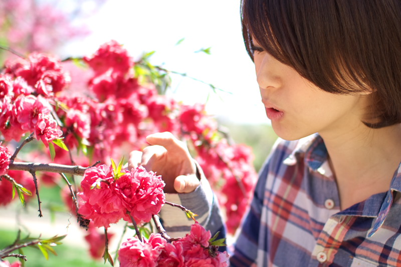 20110417ajiokahiroka07.jpg