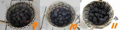 711blackberry2.jpg