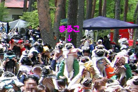 090517 パグミ集合 ①
