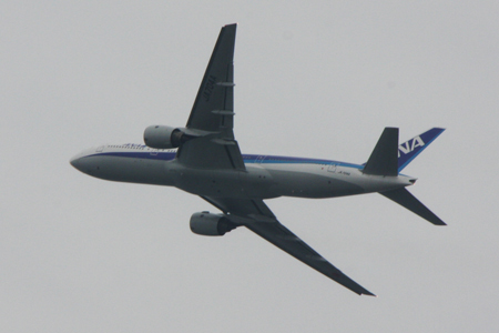 P-1080718.jpg