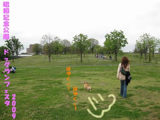 20090518_01.jpg