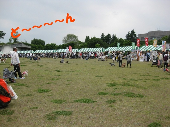 20090518_02.jpg