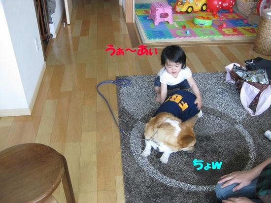 20090524_07.jpg