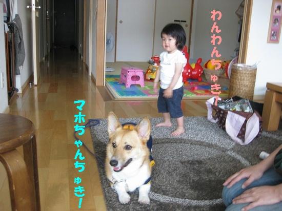 20090524_09.jpg