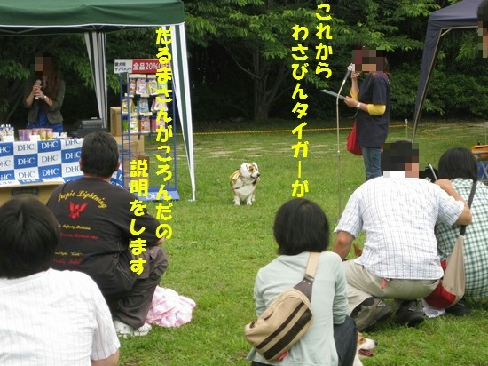 20090602_02.jpg