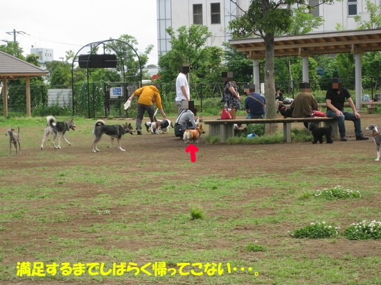 20090604_02.jpg