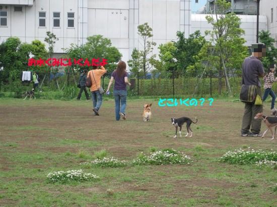 20090604_04.jpg