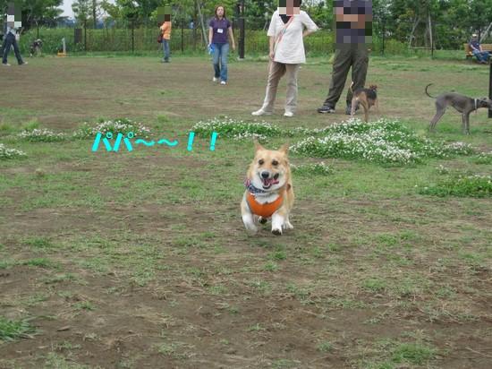 20090604_05.jpg