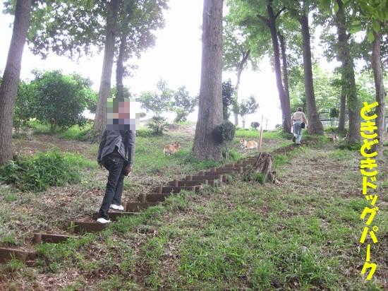 20090621_01.jpg