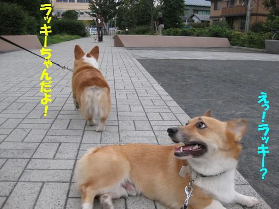 20090712_07.jpg