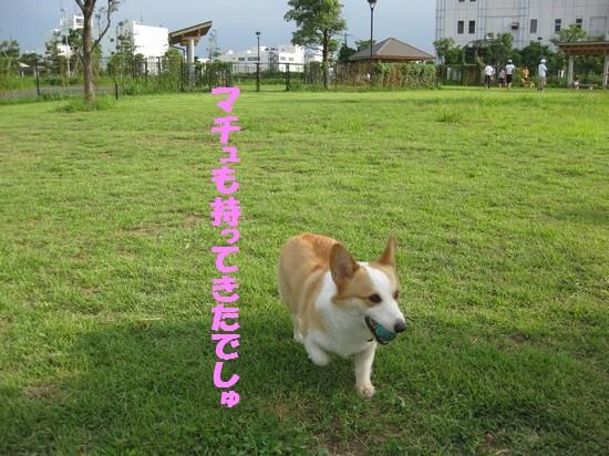 20090721_04.jpg