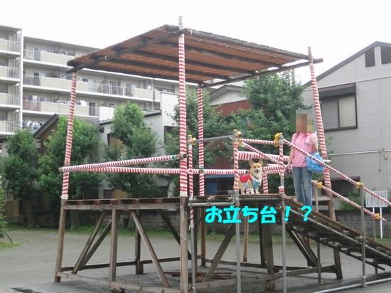 20090726_03.jpg
