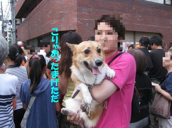 20090812_04.jpg