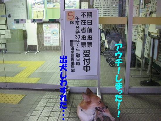 20090824_02.jpg