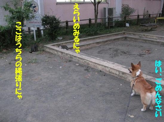20090828_03.jpg