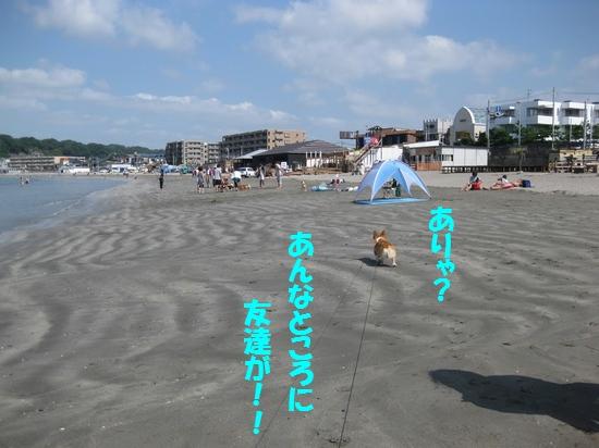 20090907_02.jpg