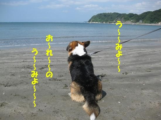 20090907_03.jpg
