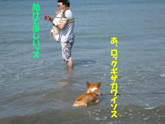 20090907_06.jpg