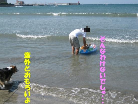20090909_01.jpg