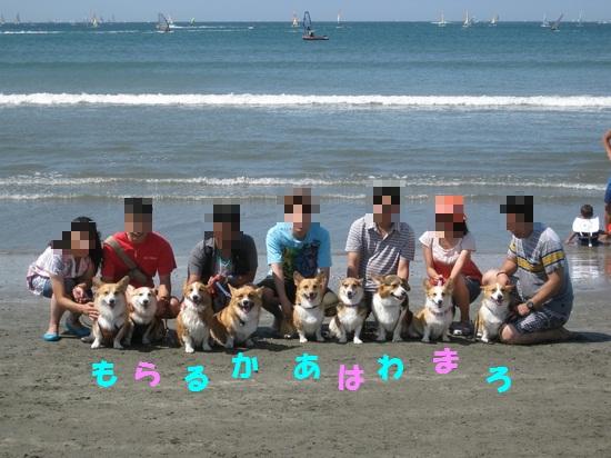 20090909_05.jpg