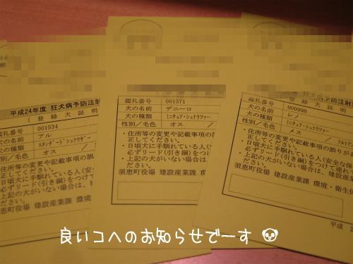 1_20120403095729.jpg