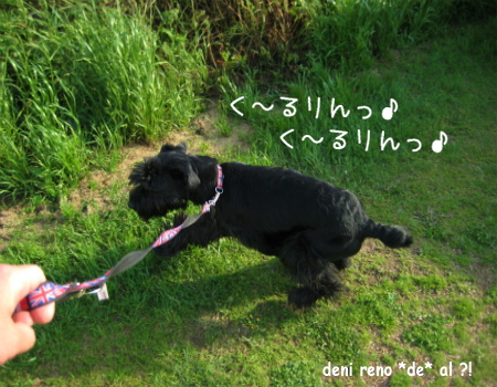 2_20120224110929.jpg