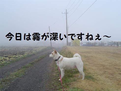 001kiri.jpg