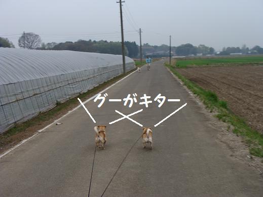 018guugakita.jpg