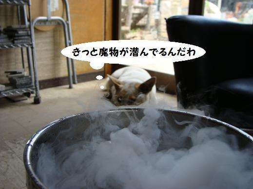 030mamono.jpg