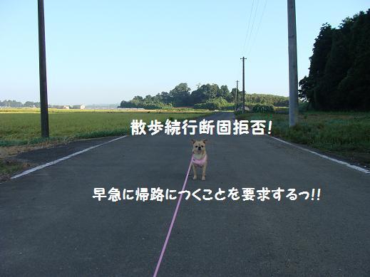 049dannkokyohi.jpg