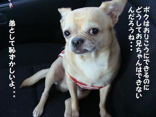 058hazukasii.jpg