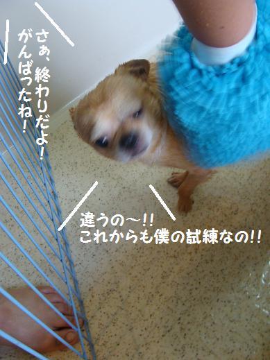 066kannryou.jpg