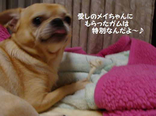 070tokubetu.jpg