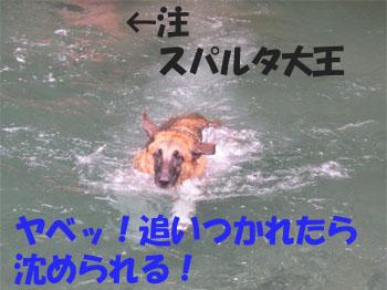 915mizu8.jpg