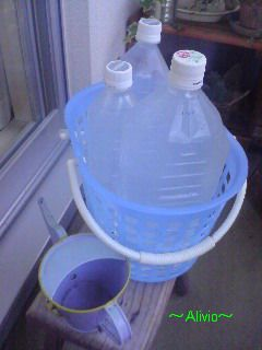 20080714水遣り