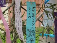 七夕祭り 短冊6.jpg