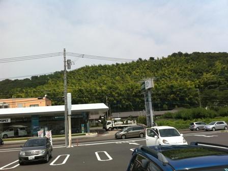 kobu4.jpg