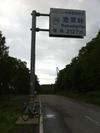 mugi_1.jpg