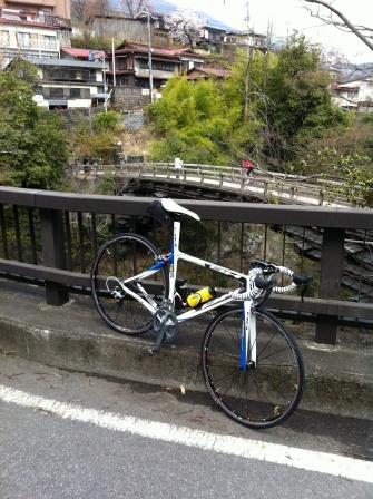 sarubashi.jpg