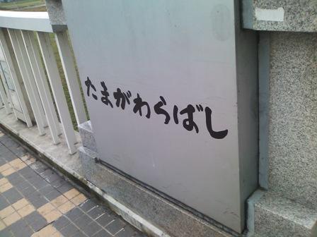 tamagawabashi.jpg