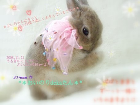 deka-birthday-04 加工S