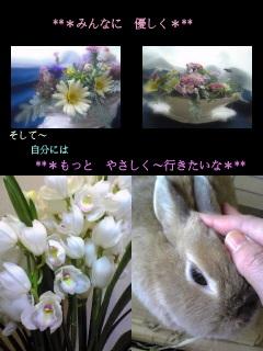 Image-deka.jpg
