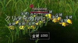 09_20_008.jpg