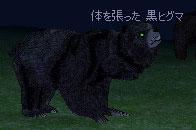 10_13_005.jpg