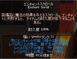11_06_002.jpg