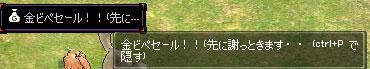 11_07_001.jpg