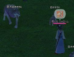 2006_04_16_001.jpg